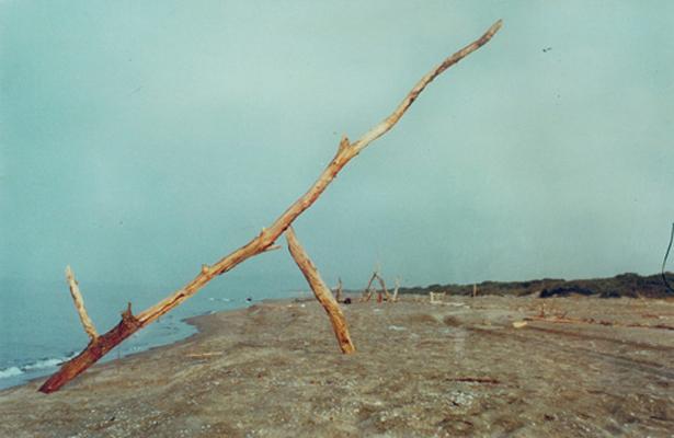 solitudo -1988a1